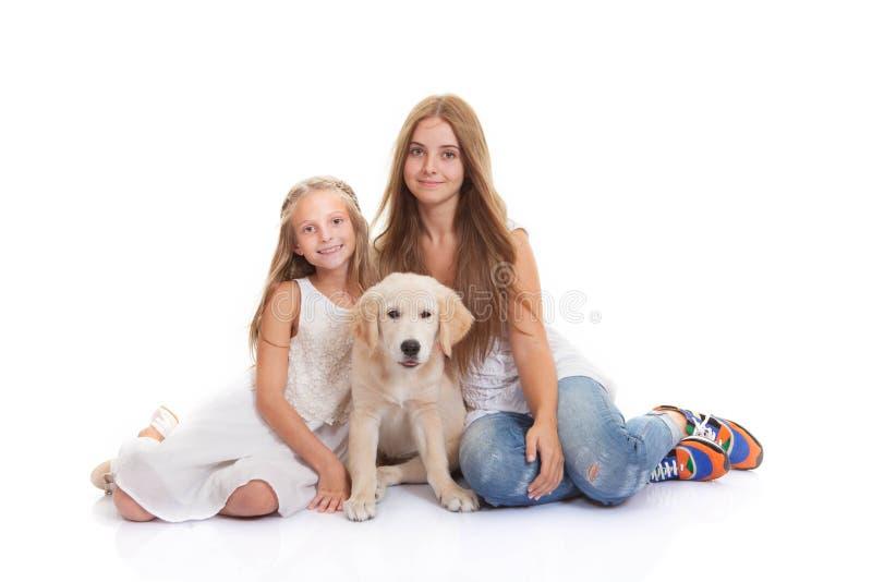 Het puppy van het familiehuisdier stock fotografie