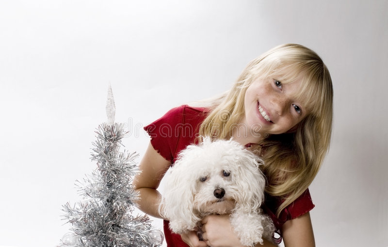 Het Puppy van Kerstmis! royalty-vrije stock fotografie