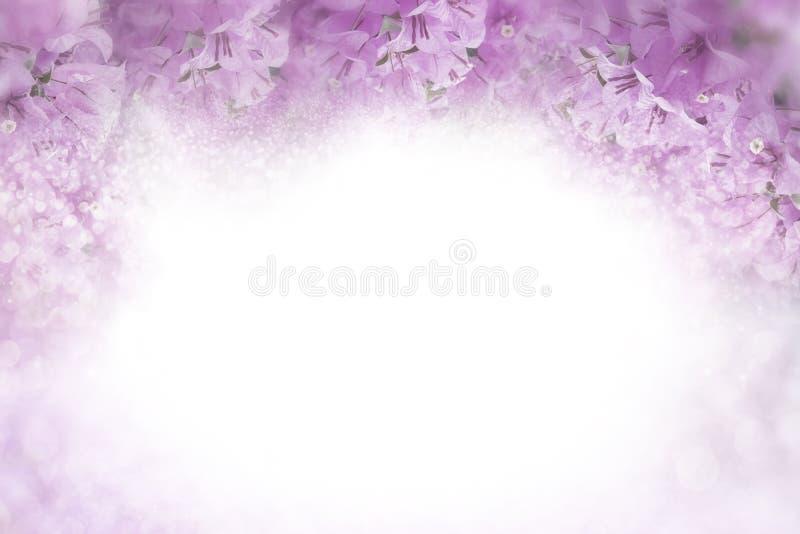 Het purpere kader van bloembougainvillea op zachte roze valentijnskaart als achtergrond en het concept van de huwelijkskaart royalty-vrije stock fotografie