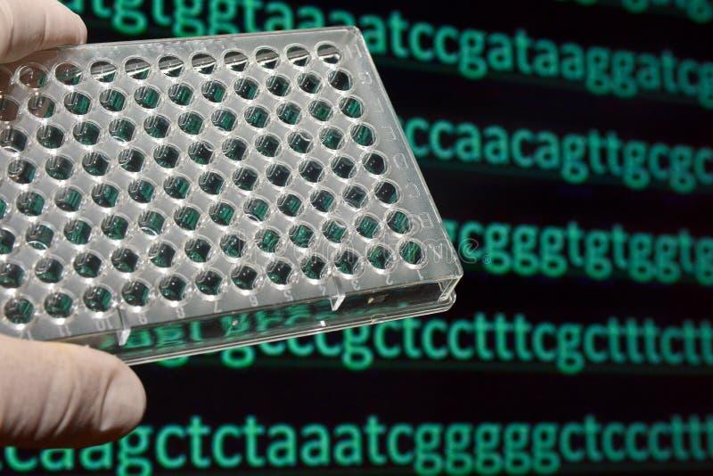 Het rangschikken van het genoom royalty-vrije stock afbeeldingen
