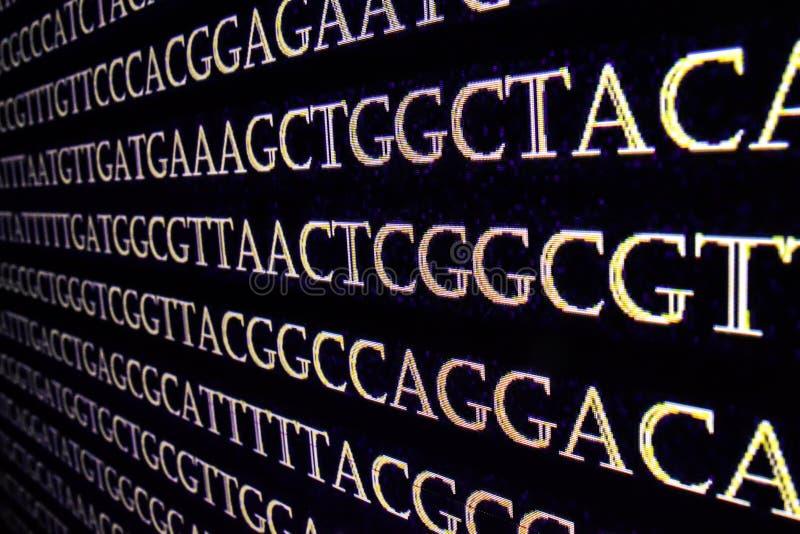 Het rangschikken van het genoom royalty-vrije stock foto