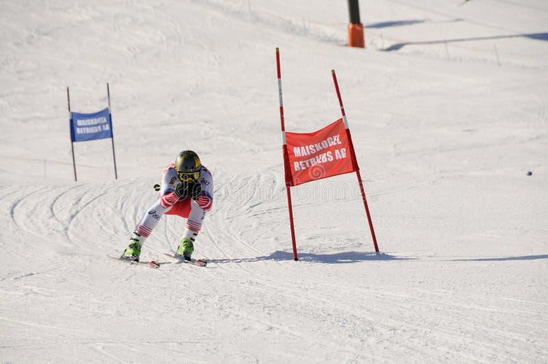 Het ras van de ski stock afbeelding