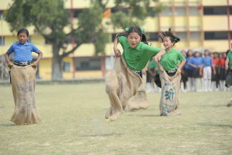 Het ras van de zakhindernis - schoolkinderen die ongeveer concurreren om te vallen royalty-vrije stock foto's