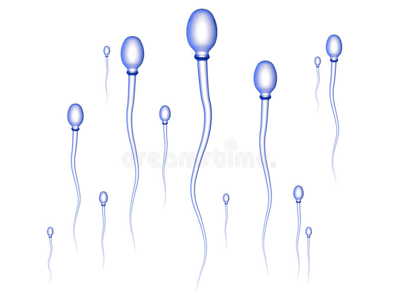 Het Ras van het sperma royalty-vrije illustratie