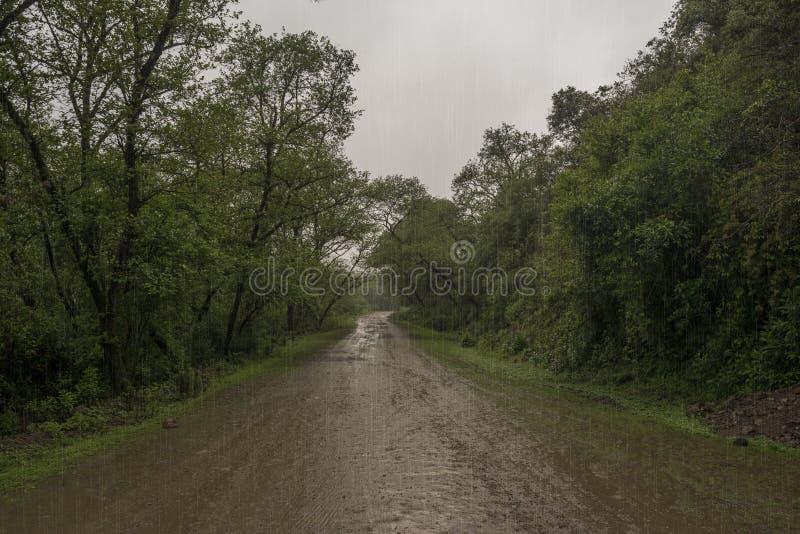 Het regent overvloedig op de modderige weg royalty-vrije stock foto's