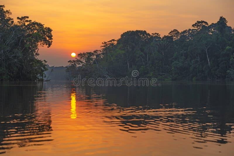 Het Regenwoud van Amazoni? bij Zonsondergang, het nationale park van Yasuni, Ecuador stock foto