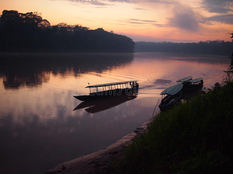 Het regenwoudzonsopgang van Amazonië royalty-vrije stock afbeeldingen