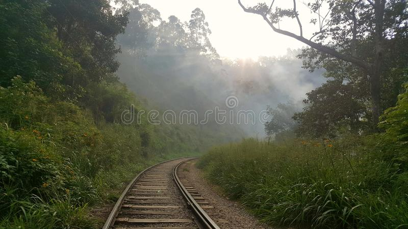 het reizen in Sri Lanka stock foto's