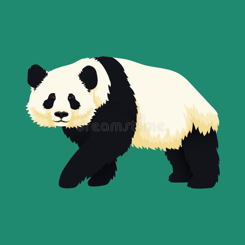 Het reuzepanda lopen zwart-wit draag Bedreigde Soorten vector illustratie