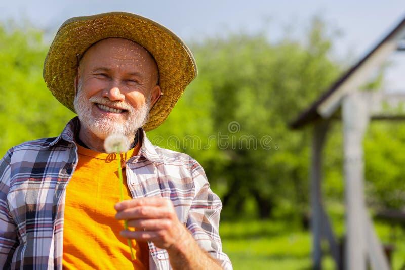 Het richten van de grijs-haired teruggetrokken mens die terwijl het houden van paardebloem glimlachen royalty-vrije stock foto's