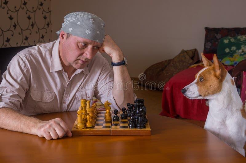 Het rijpe mens harde kijken op zijn hondsrivaal stock fotografie