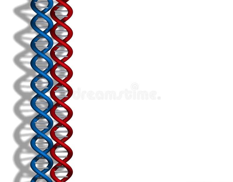 Het rode blauw van DNA stock illustratie