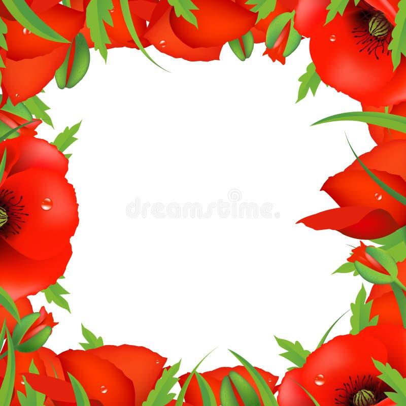 Het rode Frame van de Papaver stock illustratie