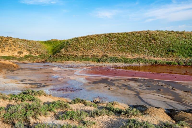 Het rode hoogtepunt van het watermeer van ijzer in mooie steppe stock foto's