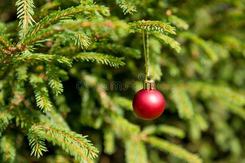Het rode Kerstmisornament hangen van Kerstmisboom Van kerstboom achtergrond en Kerstmis decoratie Gelukkig Nieuwjaar stock afbeeldingen