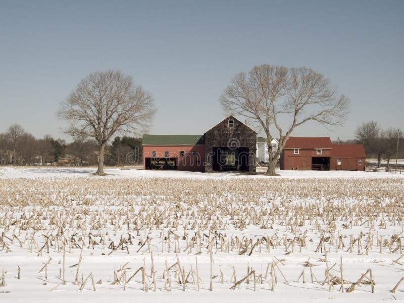 Het rode Landbouwbedrijf van de Schuur stock afbeelding