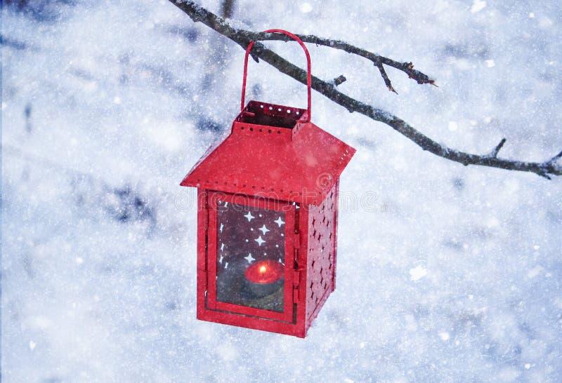 Het rode lantaarn hangen op de boomtak Sneeuw de winterochtend in park royalty-vrije stock afbeelding