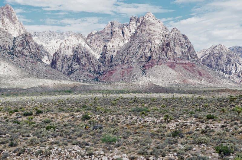 Het rode Nationale Park van de Rotscanion, Nevada royalty-vrije stock foto