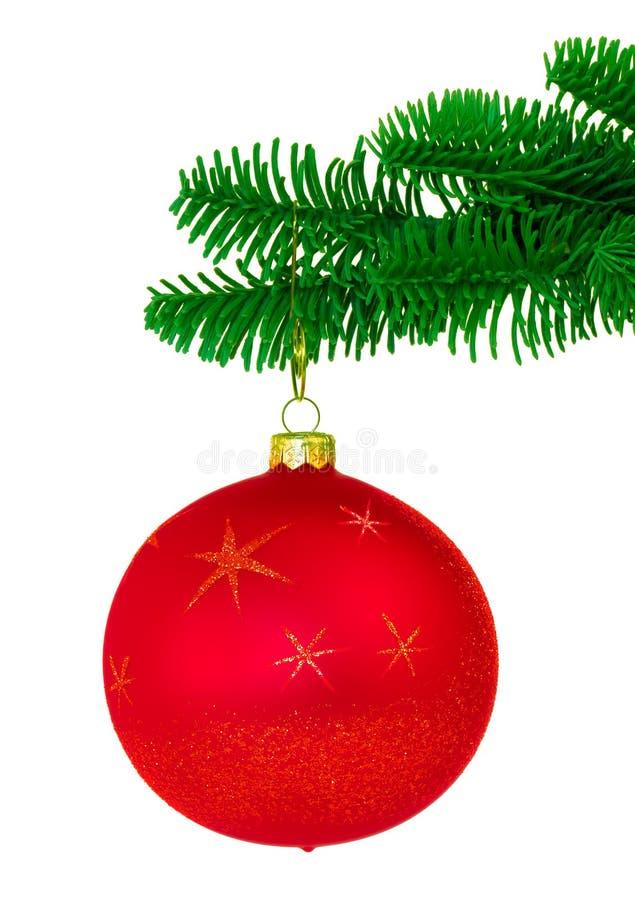 Het rode Ornament van Kerstmis op de Edele Boeg van de Boom van de Pijnboom stock afbeeldingen