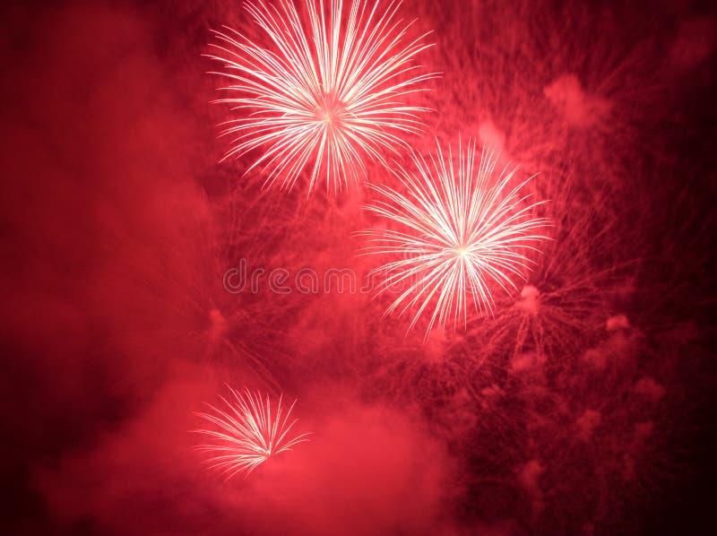 Het rode vuurwerk exploderen stock afbeelding