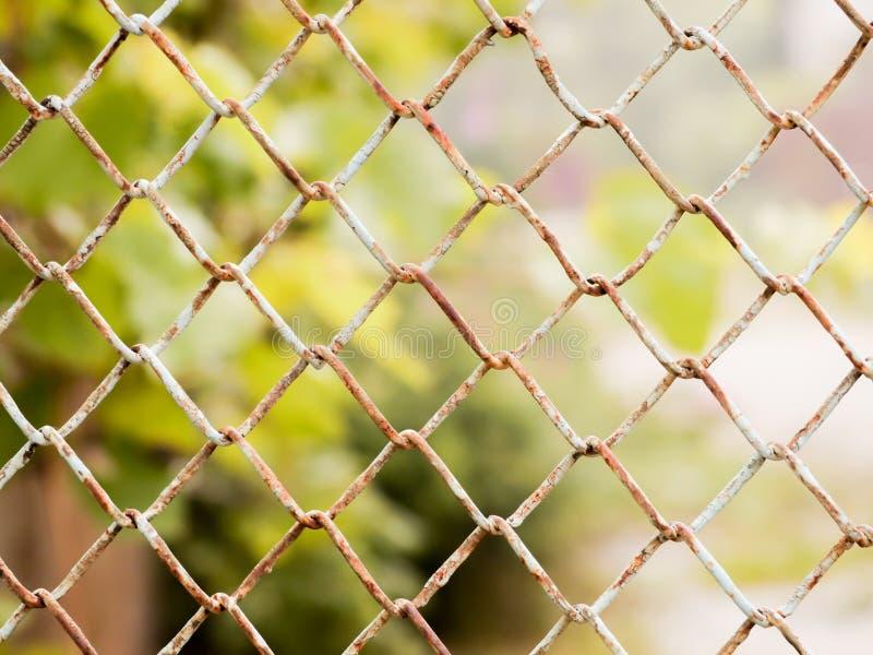 Het roestige gekleurde netwerk opleveren De metaalomheining royalty-vrije stock foto