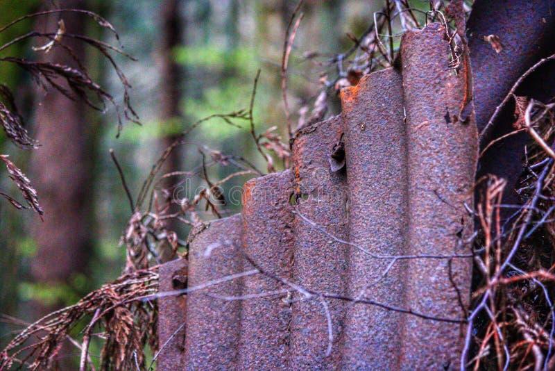Het roestige paneel van de ijzeromheining in het bos stock afbeeldingen