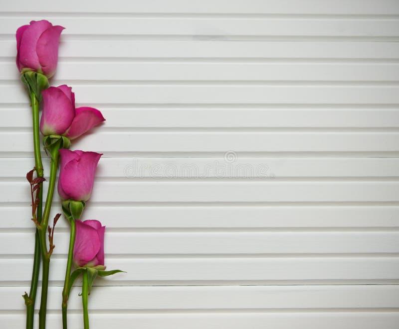 Het romantische beeld van de bloemfotografie met roze rozen in knop op een natuurlijke witte houten achtergrond royalty-vrije stock foto