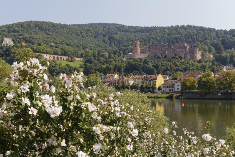 Het romantische kasteel van Heidelberg stock afbeelding
