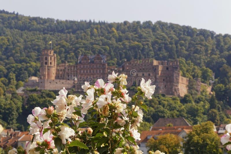 Het romantische kasteel van Heidelberg royalty-vrije stock afbeelding