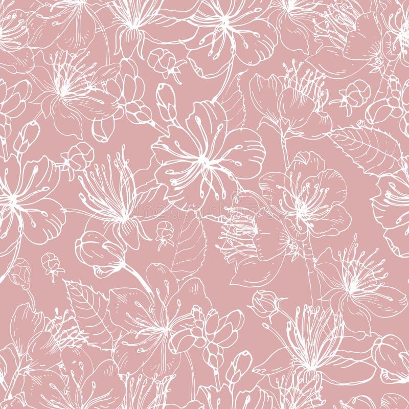 Het romantische natuurlijke naadloze patroon met mooie bloeiende bloemen van Japanse sakura overhandigt getrokken met witte lijne vector illustratie