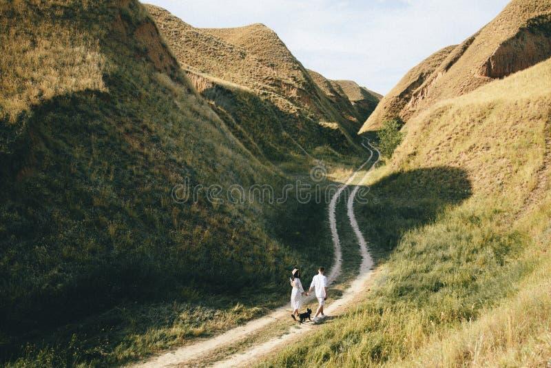 Het romantische Paar loopt in bergen met een hond royalty-vrije stock foto