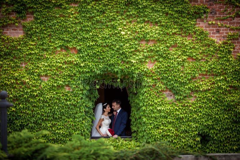 Het romantische paar van het Fairytalejonggehuwde van valentynes die in n o stellen royalty-vrije stock fotografie
