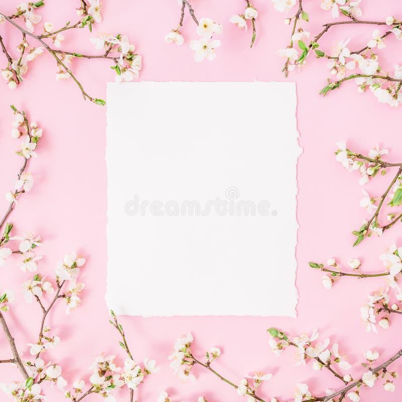Het ronde kader met de lente bloeien en de Witboek uitstekende auto op roze achtergrond Vlak leg, hoogste mening stock afbeeldingen