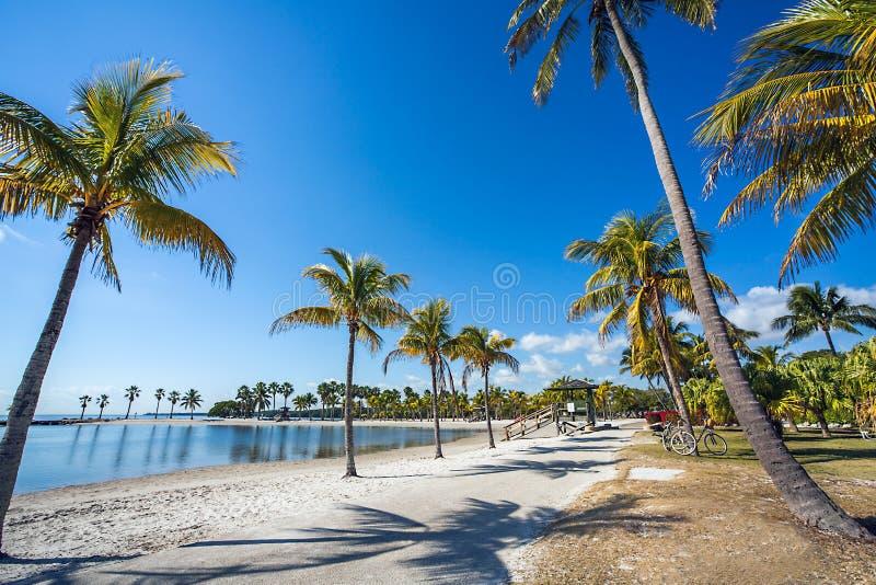 Het Ronde Strand in Matheson Hammock County Park Miami stock afbeelding