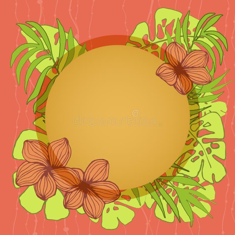 Het ronde tropische kader, het natuurlijke exemplaar ruimteontwerp met plumeriabloem, de palm en monsteradeliciosa gaan weg stock illustratie