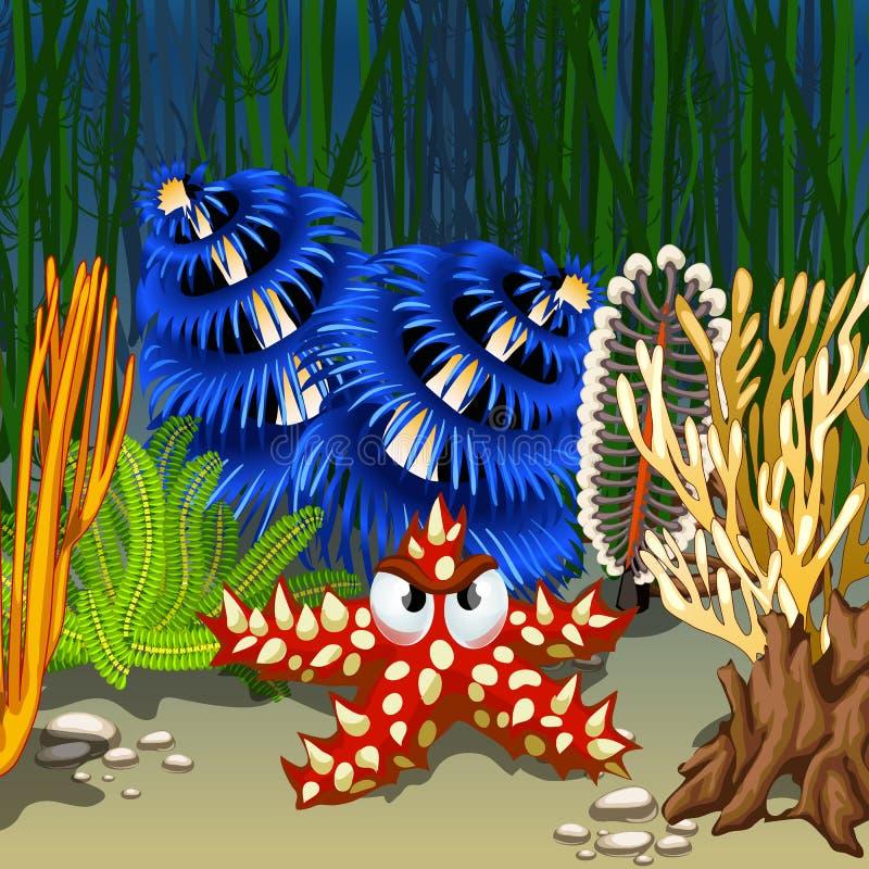 Het rood van de beeldverhaalzeester met stekelige doornen op de zeebedding onder koralen en algen De vectorillustratie van het be vector illustratie