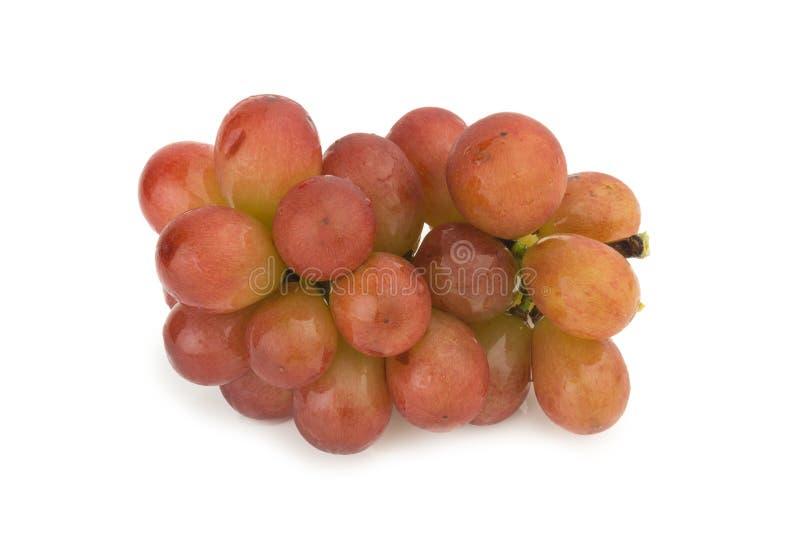 Het rood van druiven Rijpe vers De daling van het water die op witte achtergrond wordt geïsoleerdl royalty-vrije stock afbeeldingen