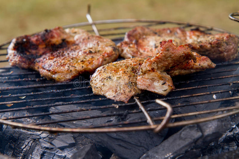 Het roosteren van Klemlapje vlees stock fotografie