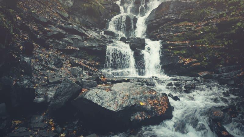 Het rotsachtige van de de oppervlakteherfst van de bergstroom houten gezicht royalty-vrije stock foto's