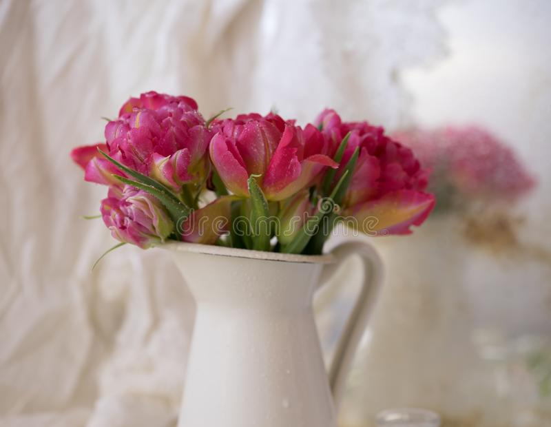 het roze boeket bloeit witte vaas bokeh achtergrond stock fotografie