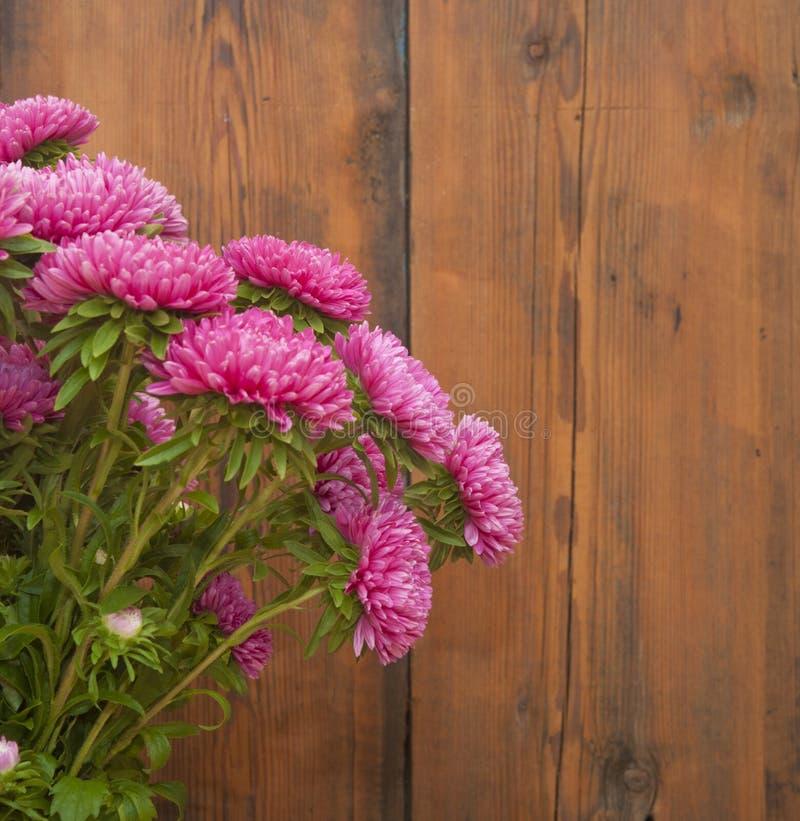 Het roze boeket van astersbloemen stock afbeelding