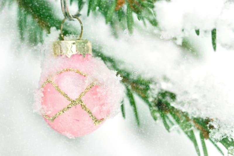Het roze de snuisterij van Kerstmis hangen in openlucht in een boom van Kerstmis stock foto