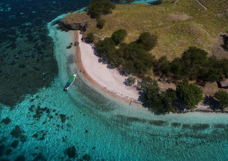 Het roze eiland van het zandstrand in Flores, Indonesië stock afbeeldingen
