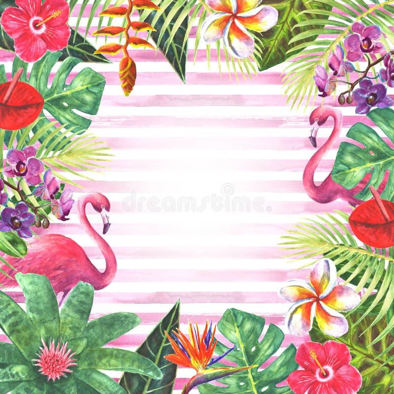 Het roze kader van flamingo tropische installaties stock illustratie