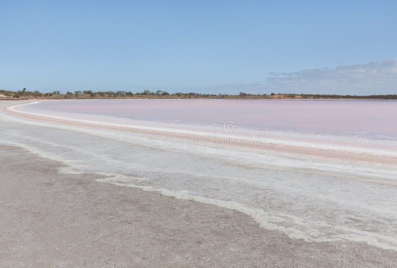 Het roze Landschap van Salt Lake Becking royalty-vrije stock foto's