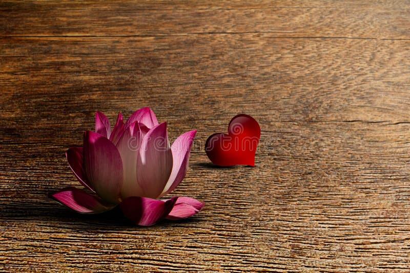 Het roze lotusbloem bloeien en rood hart met zachte schaduw op grunge uitstekende houten lijst royalty-vrije stock foto
