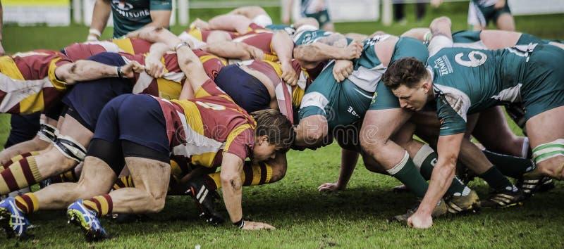 Het Rugbyscrum royalty-vrije stock foto's