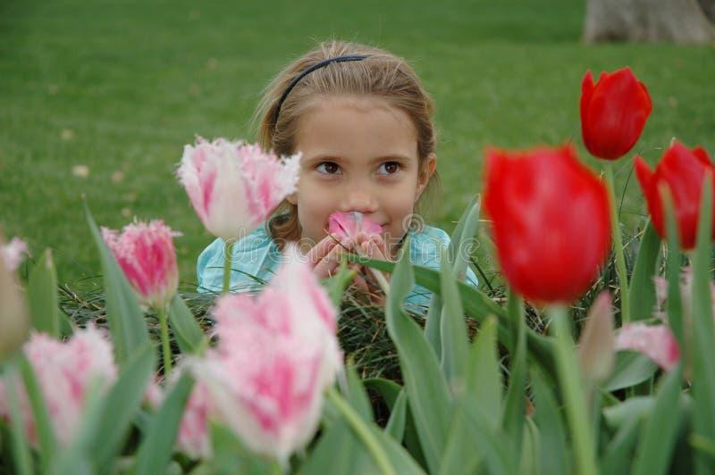 Het ruiken van de bloemen stock foto's