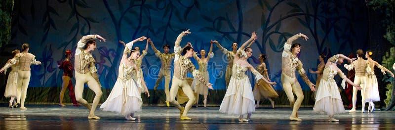 Het Russische koninklijke Meer van de ballet perfome Zwaan stock foto