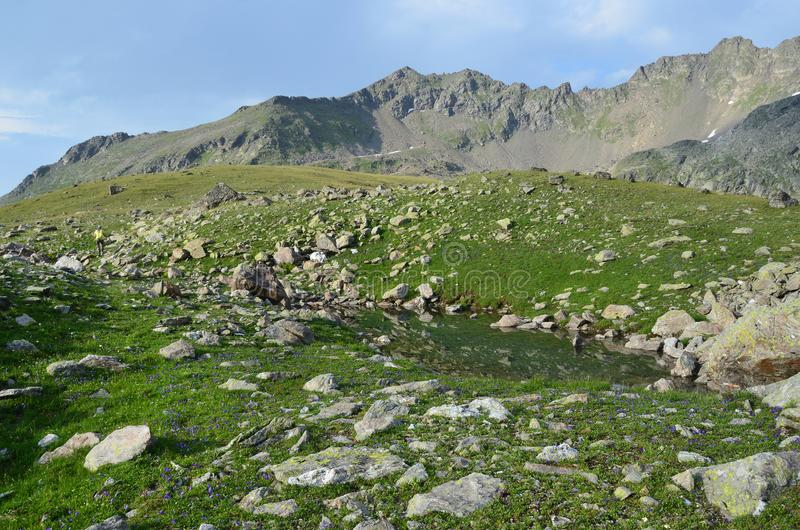 Het Russische landschap van de de zomerberg in de de biosfeerreserve van de Kaukasus stock foto's
